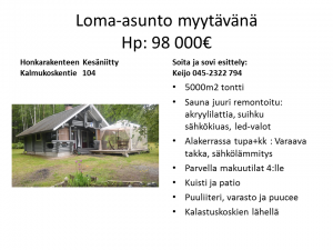 Kesäniitty_mokki
